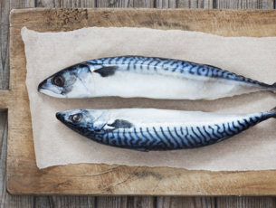 grilled-mackerel-pic
