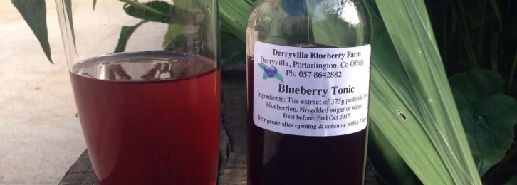 Derryville Blueberries